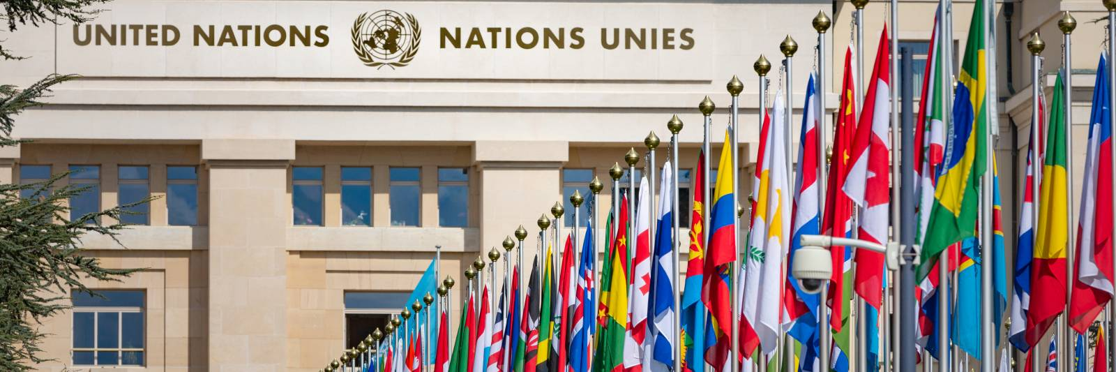 United Nations Reveals Potential Data Breach