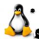 linux kernel bug opens door to wider cyberattacks
