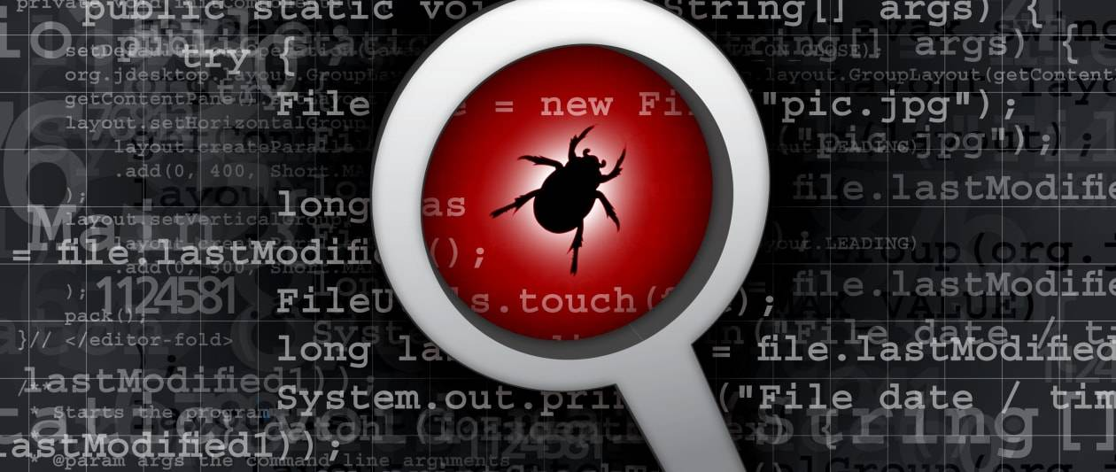 cisa launches security bug reporting program