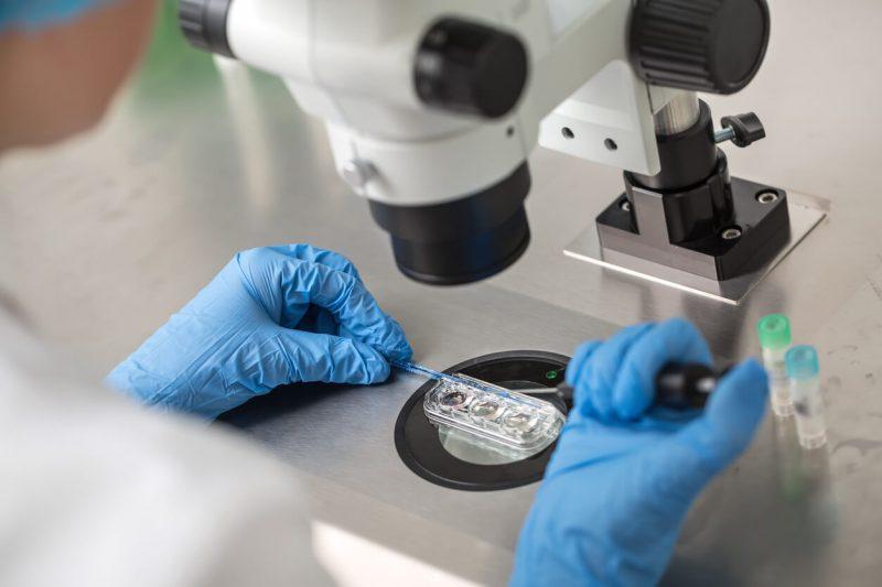 embryology data breach follows fertility clinic ransomware hit