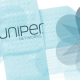 critical juniper bug allows dos, rce against carrier networks
