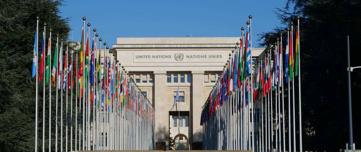 un high commissioner calls for ban on harmful ai tools